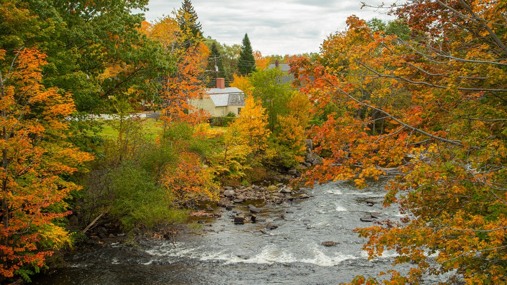 Kennebunk showing a river or creek and fall colors