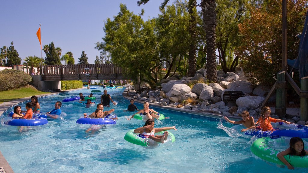 Knott\'s Berry Farm showing swimming and a waterpark as well as a small group of people