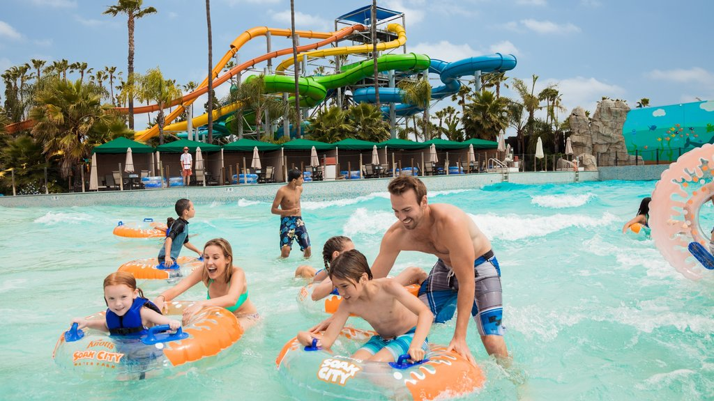 Knott\'s Berry Farm featuring a waterpark and swimming as well as a family