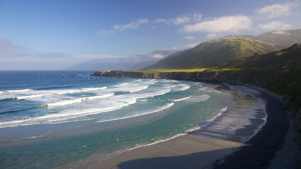 Monterey showing general coastal views and landscape views