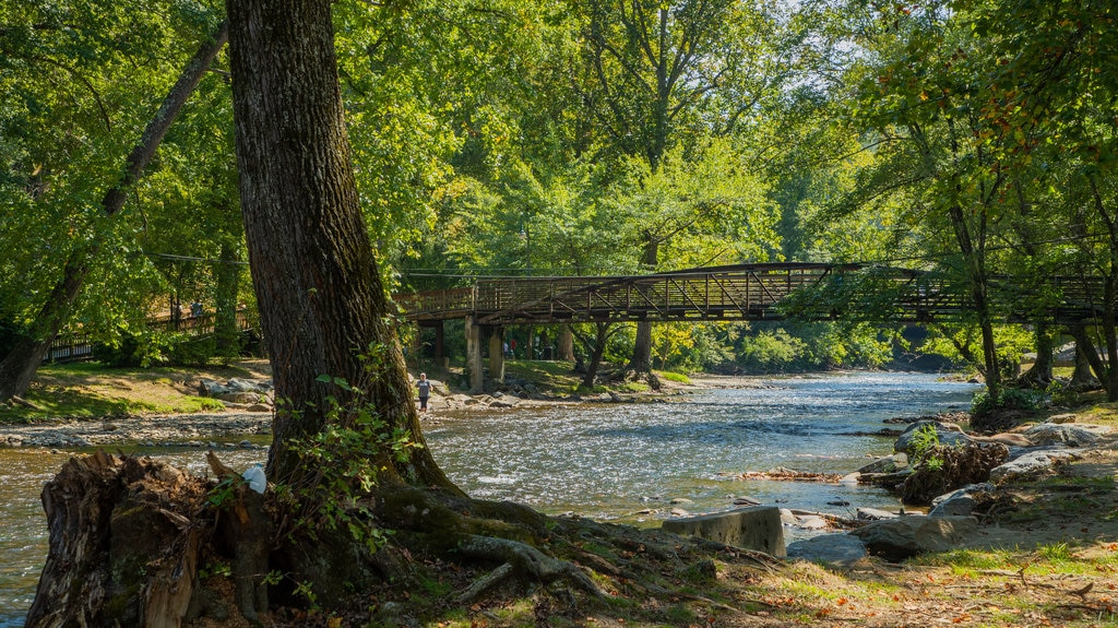 Oconaluftee Islands Park which includes a river or creek and a bridge