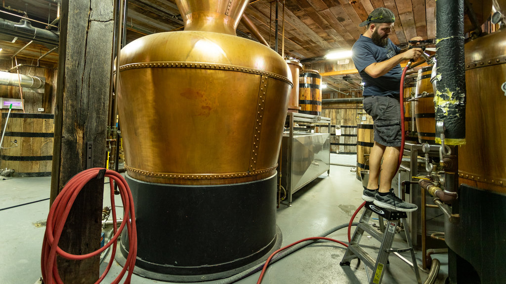 Ole Smoky Moonshine Distillery showing interior views as well as an individual male
