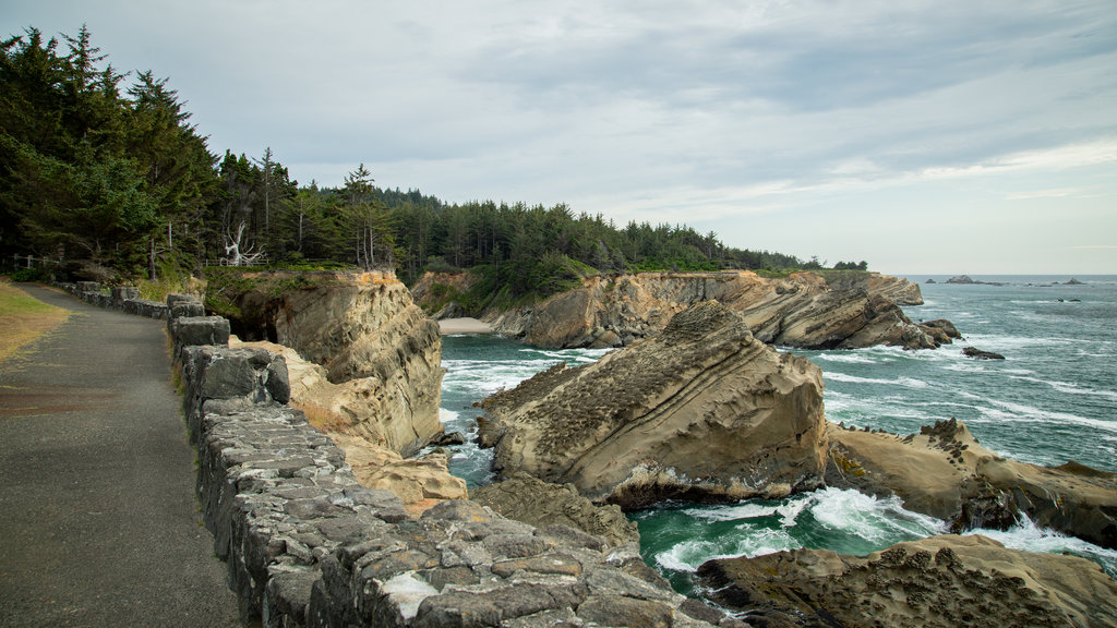 Shore Acres State Park showing general coastal views and rugged coastline