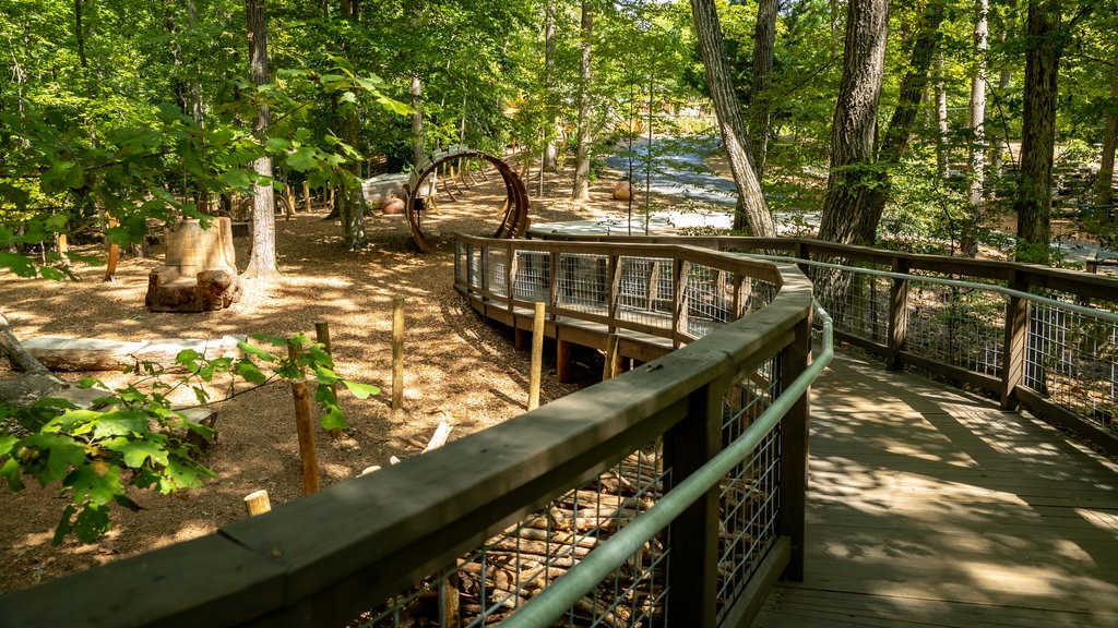 State Botanical Garden of Georgia showing a park and a bridge
