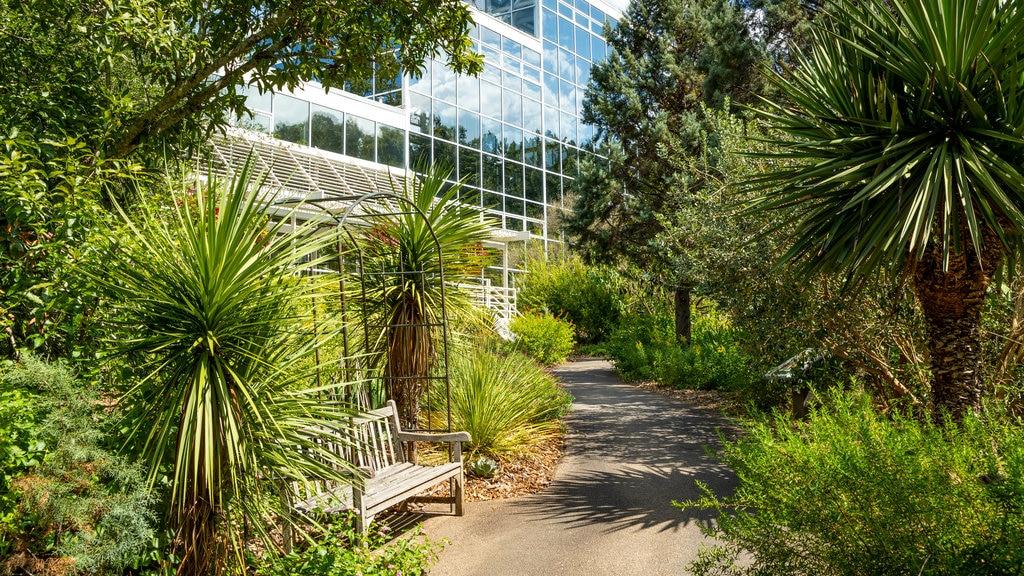 State Botanical Garden of Georgia showing a garden