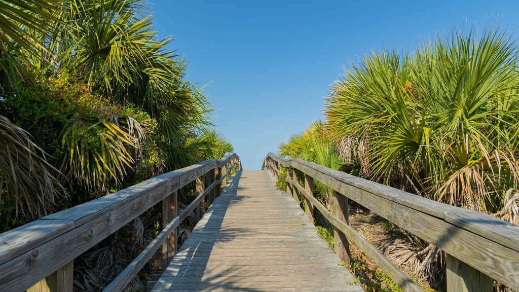 Tybee Island showing a bridge