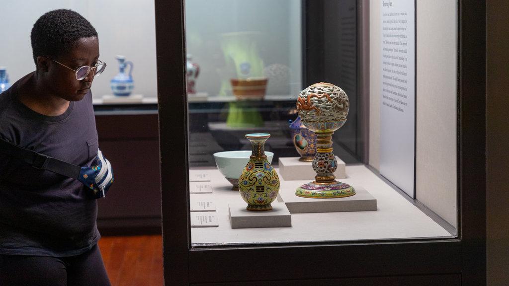 Museo del Palacio Nacional ofreciendo vistas interiores y también un hombre