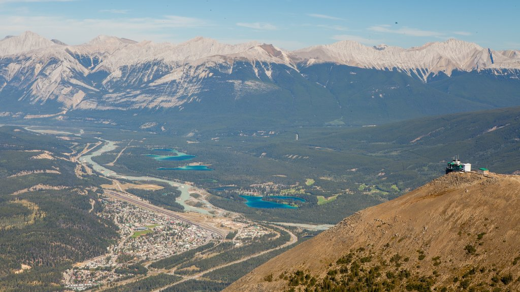 Jasper SkyTram showing tranquil scenes, landscape views and mountains