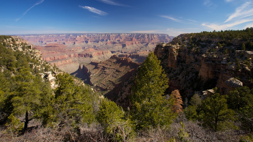 Grand Canyon showing a gorge or canyon and landscape views
