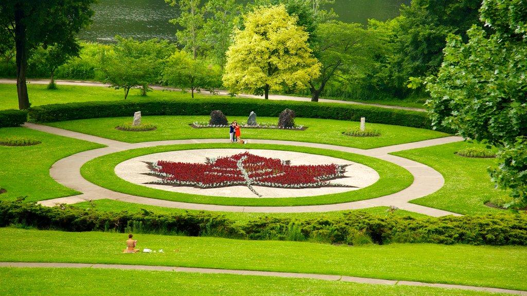 Toronto mostrando un parque, flores y arte al aire libre