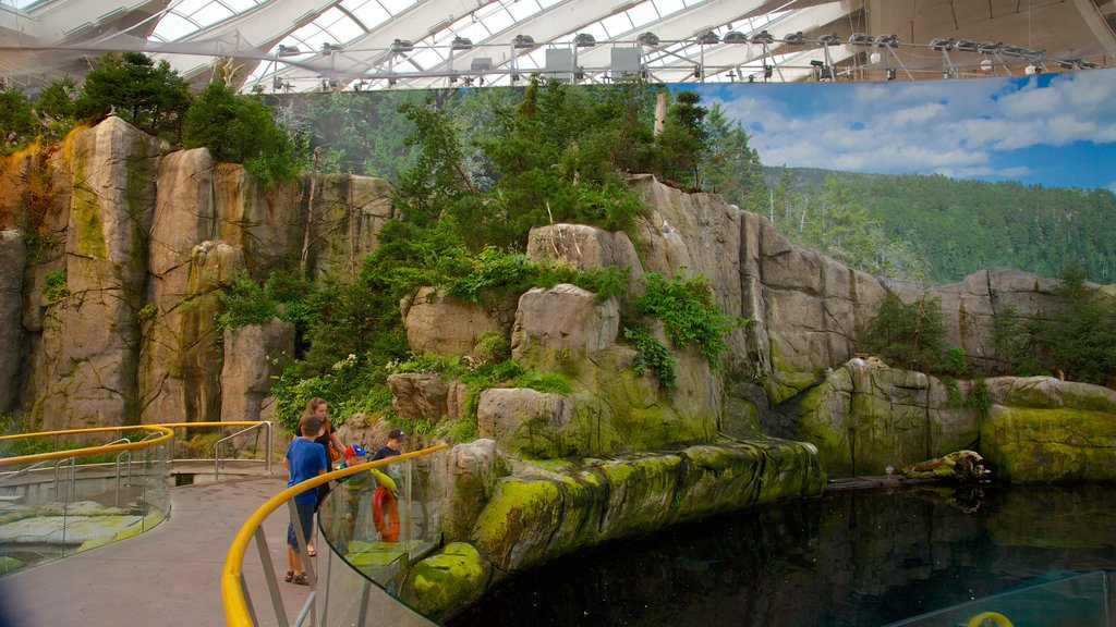 Montreal Biodome which includes marine life, zoo animals and a pond
