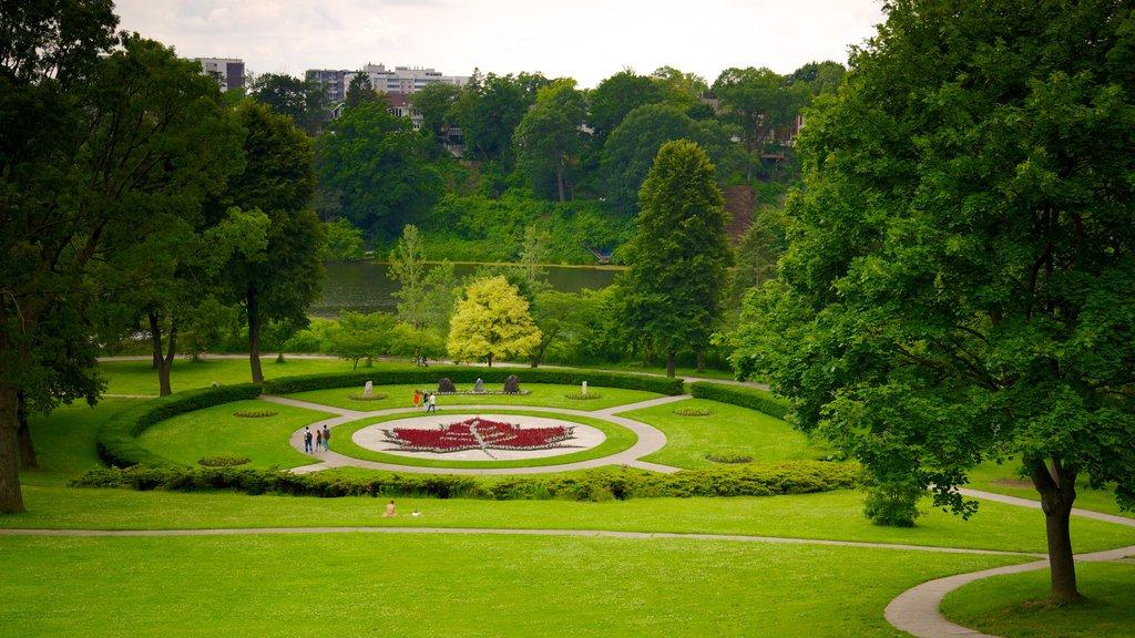 High Park which includes a garden
