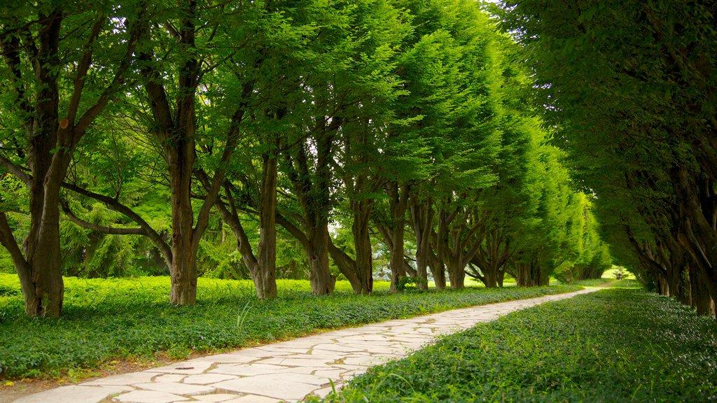 Jardín Botánico de Niagara Parks ofreciendo un jardín