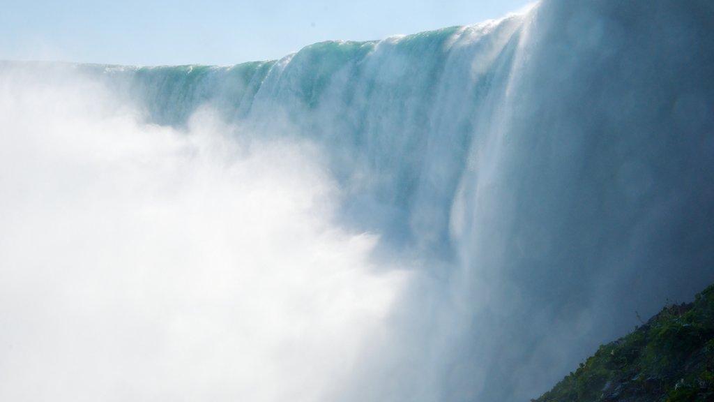 Cataratas Horseshoe mostrando vistas de paisajes y una cascada