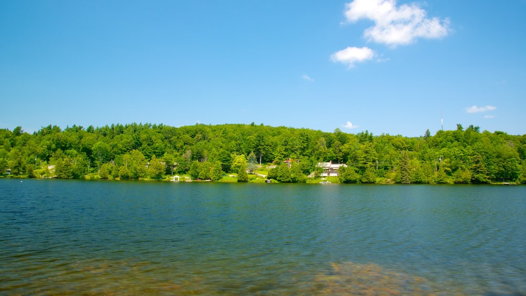 Gatineau Park showing general coastal views, landscape views and a lake or waterhole