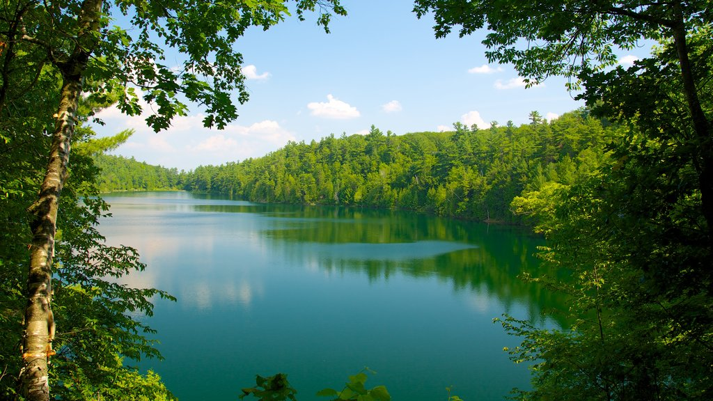 Gatineau Park showing a garden, landscape views and a lake or waterhole