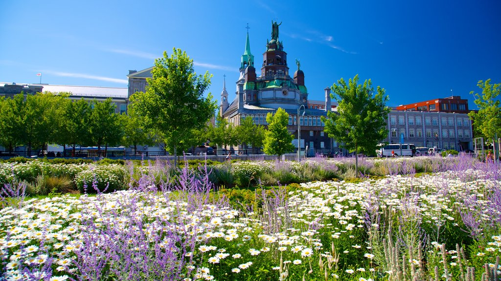 Old Montreal showing heritage elements, flowers and a garden