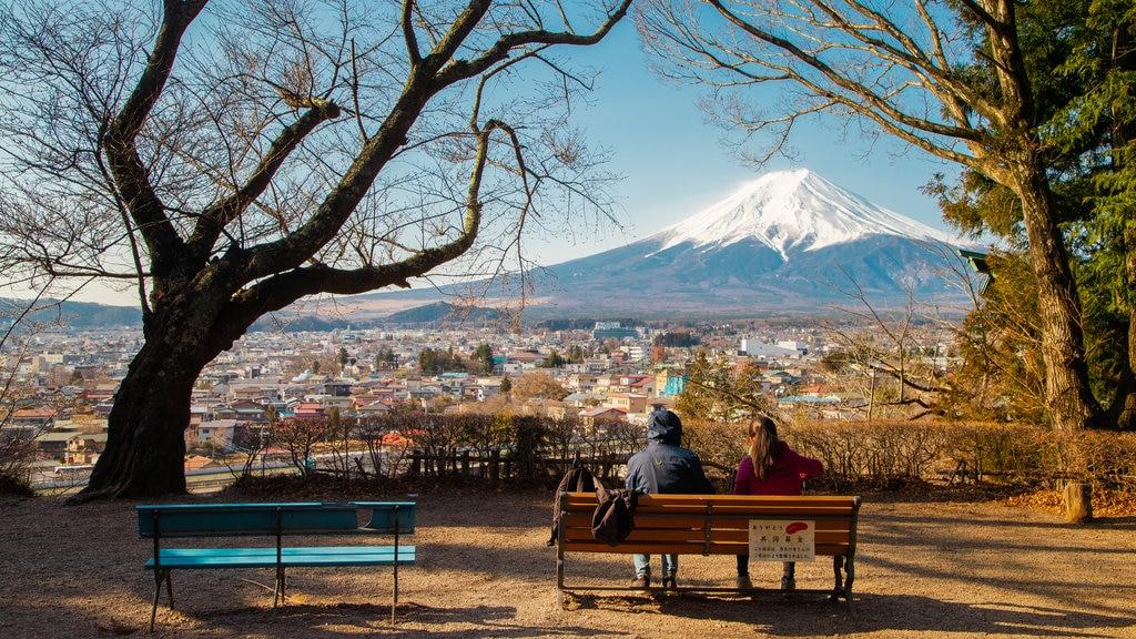 Monte Fuji mostrando vistas de paisajes, un parque y montañas