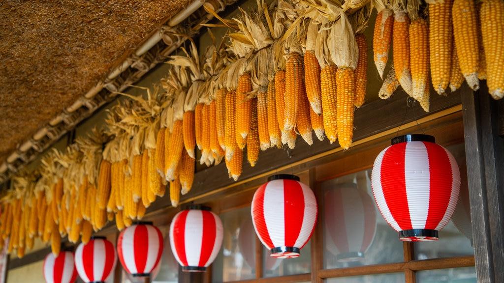Lake Saiko Iyashi no Sato NENBA featuring food and markets