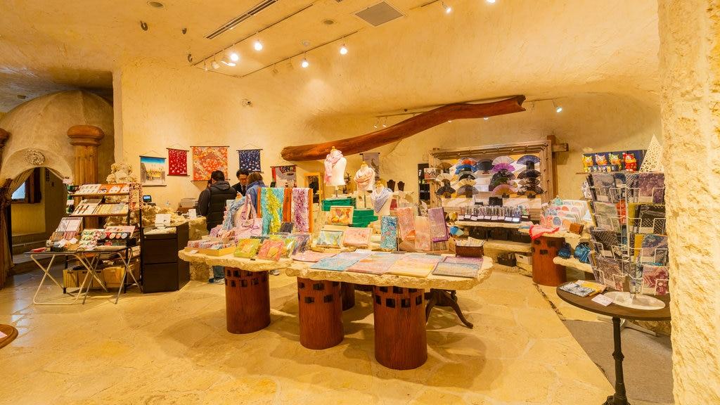 Itchiku Kubota Art Museum featuring shopping and interior views