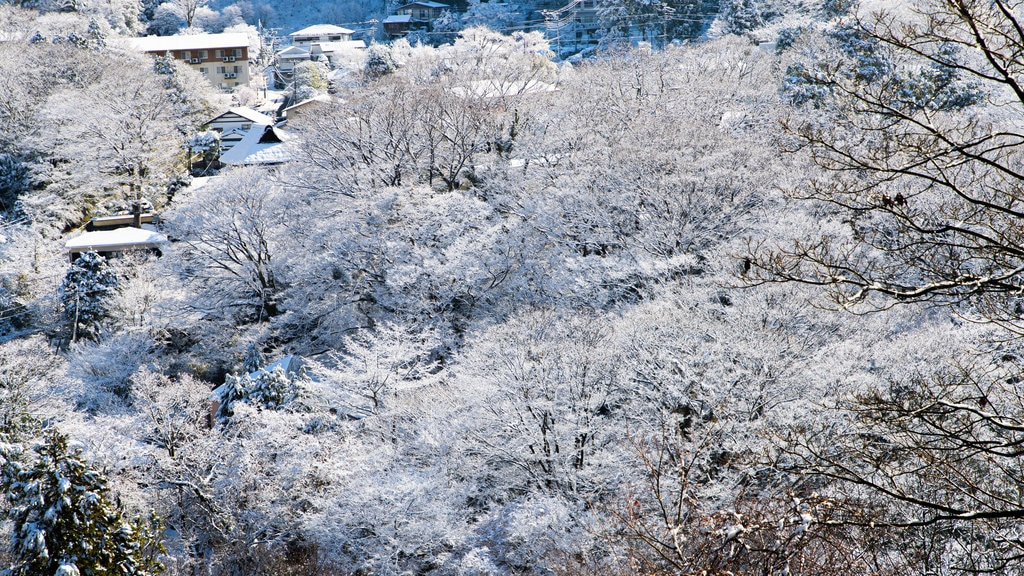 Hakone featuring snow