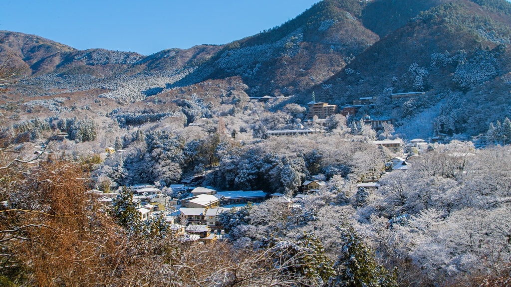 Hakone which includes landscape views, a small town or village and snow