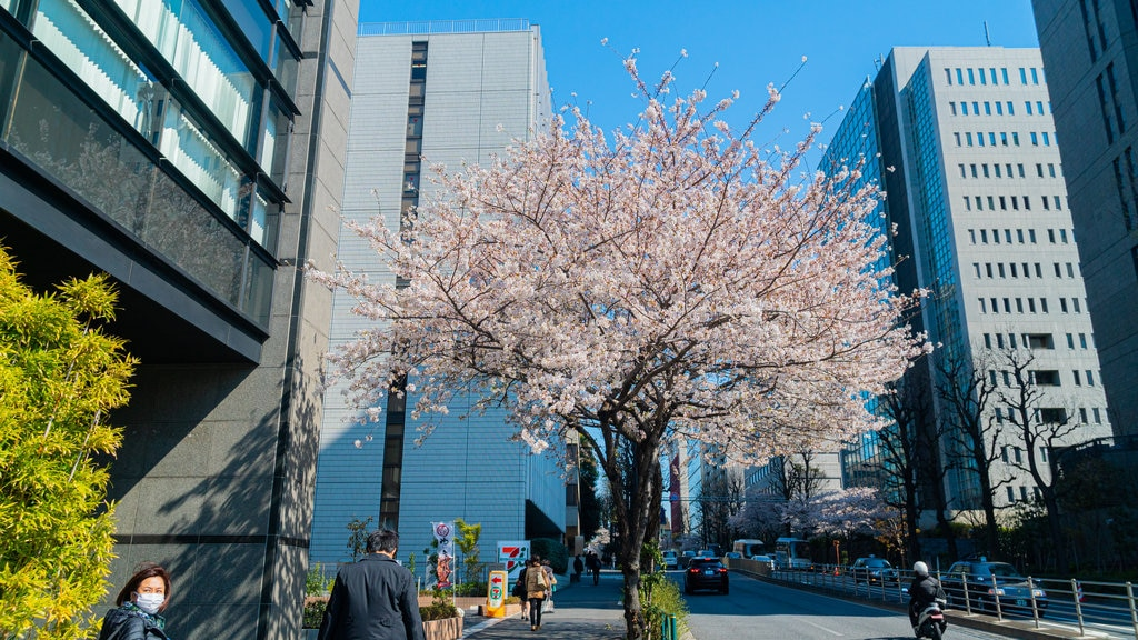 Chiyoda featuring street scenes, wildflowers and a city