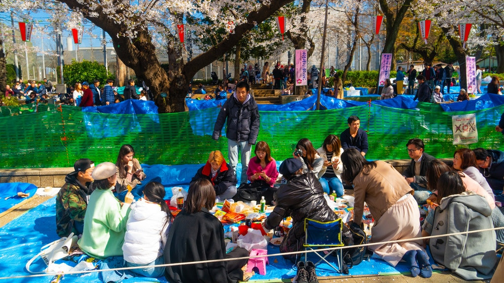 Ueno Park featuring picnicing as well as a small group of people