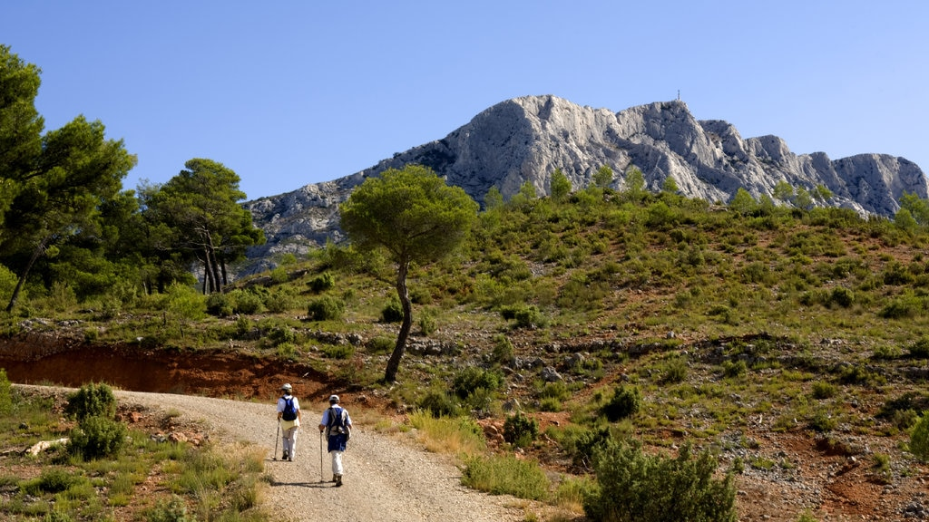 Aix-en-Provence featuring hiking or walking, landscape views and tranquil scenes