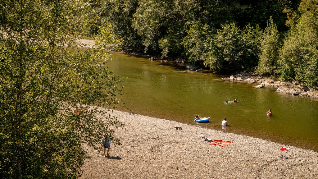Bogachiel River featuring swimming and a river or creek as well as a small group of people
