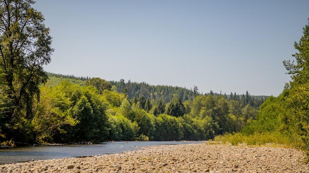 Bogachiel River featuring a pebble beach and a river or creek