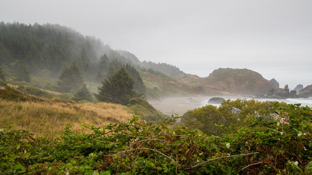 Lone Ranch Beach featuring mist or fog and general coastal views