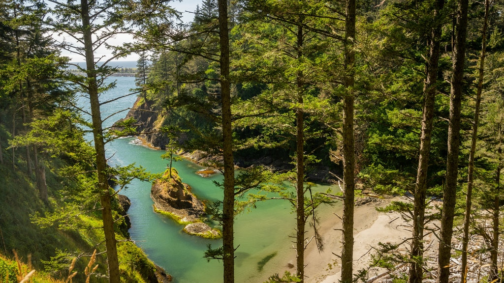 Cape Disappointment State Park featuring a sandy beach, general coastal views and landscape views