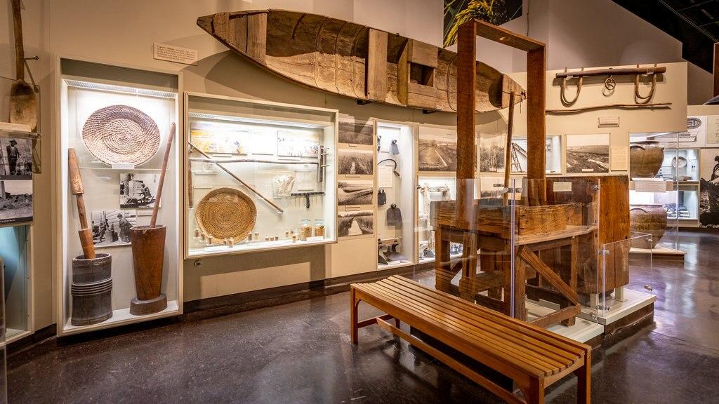 Charleston Museum ofreciendo vistas interiores y elementos del patrimonio