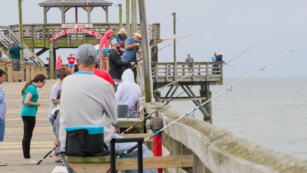 Cherry Grove Pier which includes general coastal views and fishing as well as a small group of people