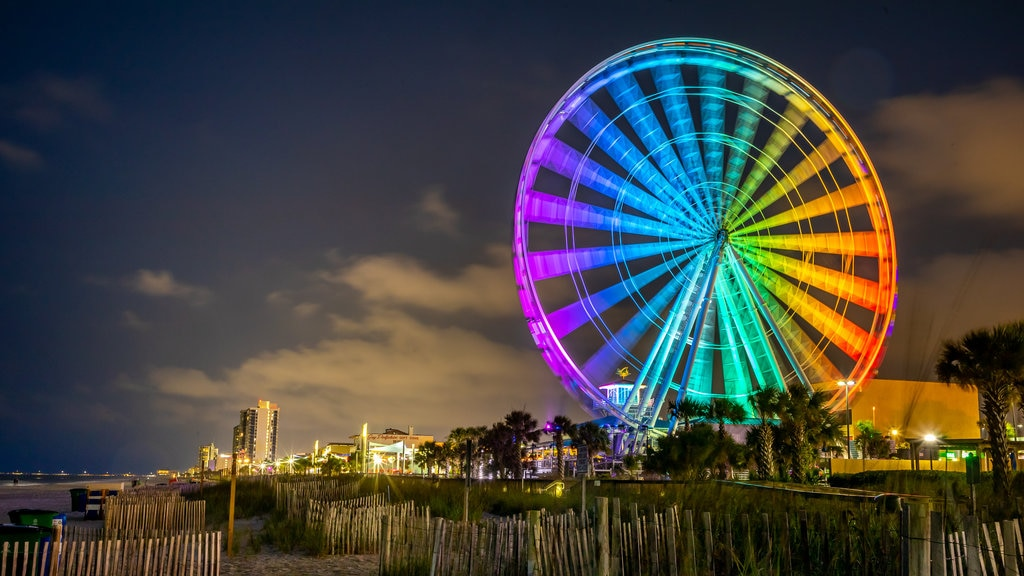 Coastal South Carolina which includes a coastal town, rides and night scenes