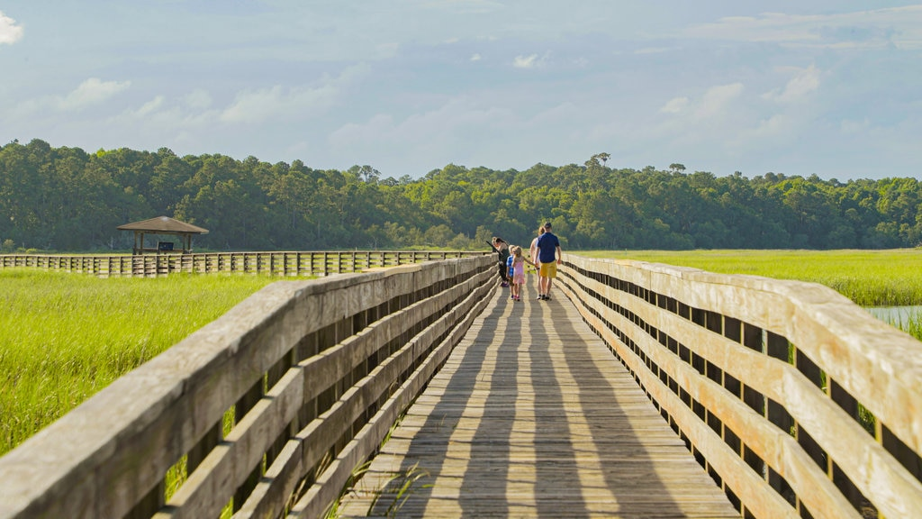 Coastal South Carolina showing tranquil scenes and a bridge as well as a family