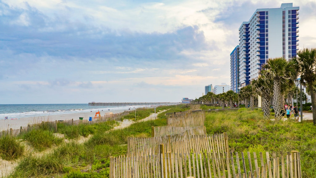 Coastal South Carolina which includes general coastal views and a coastal town