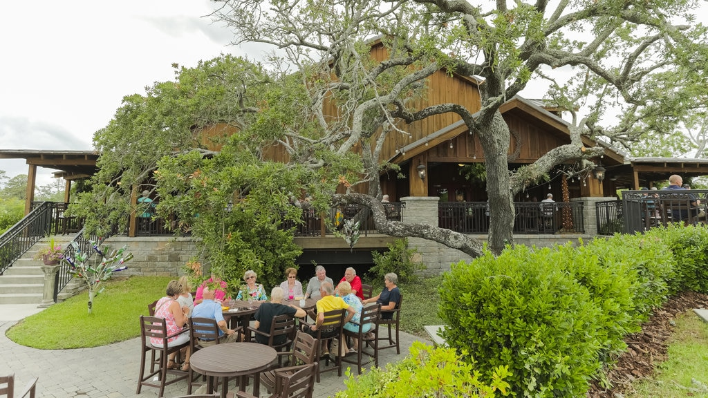 Duplin Winery which includes outdoor eating as well as a small group of people