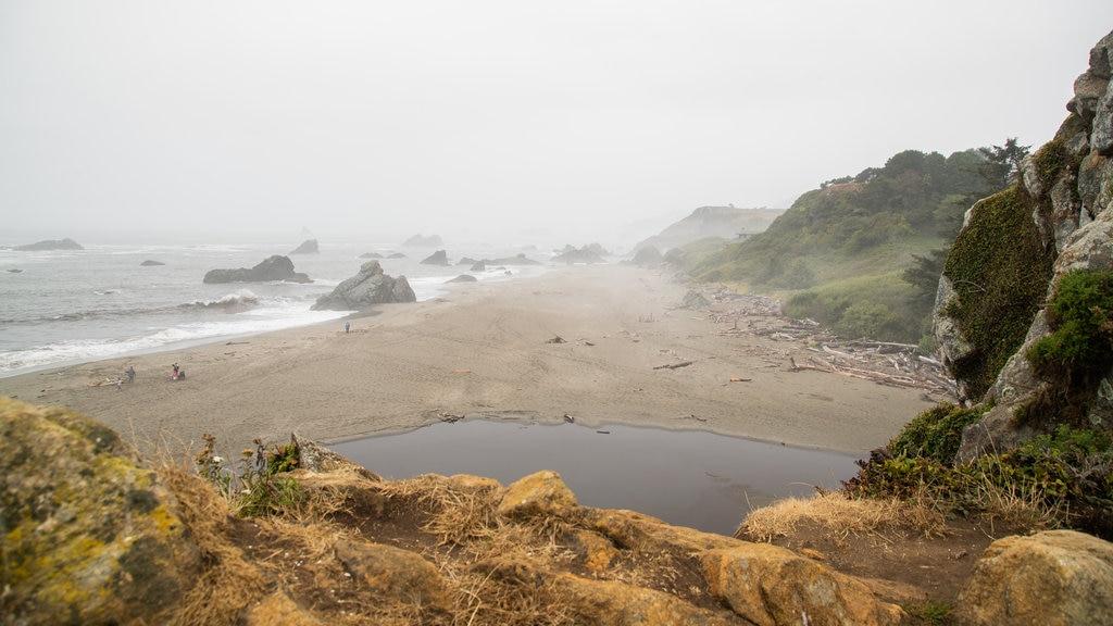 Harris Beach State Park featuring general coastal views, mist or fog and rugged coastline