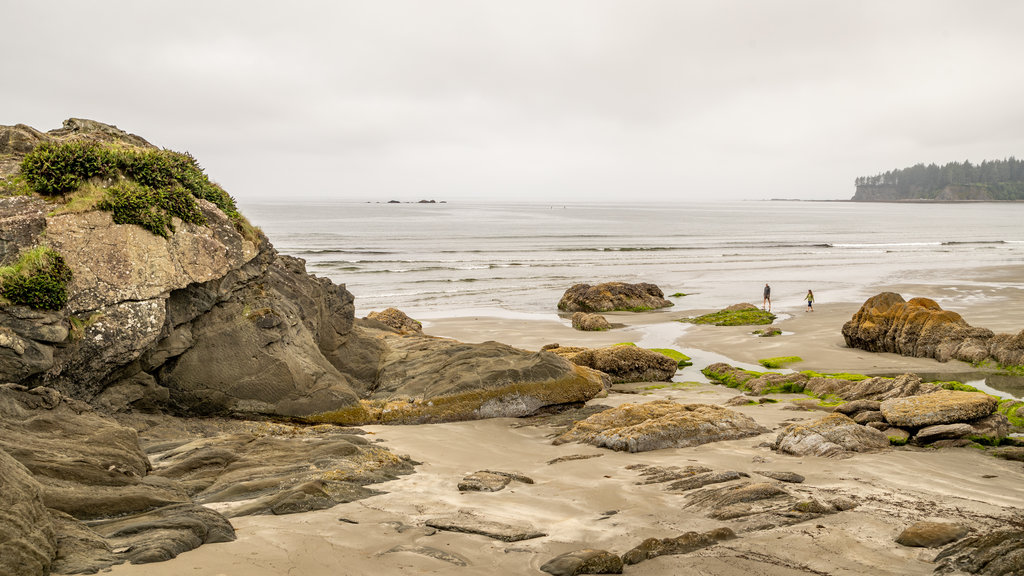 Neah Bay which includes a beach and general coastal views