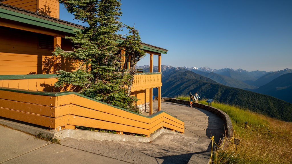 Hurricane Ridge Visitors Center which includes tranquil scenes, views and landscape views