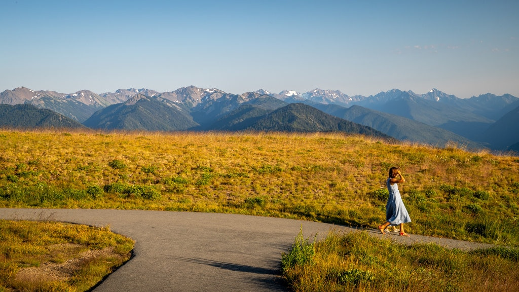Hurricane Ridge showing tranquil scenes and a sunset as well as an individual femail