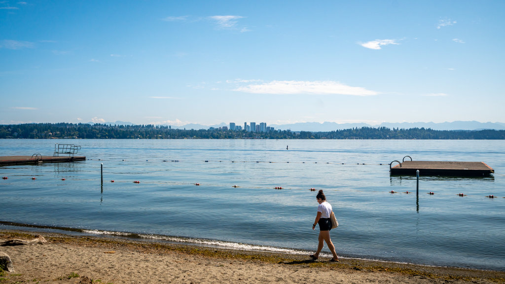 Seattle showing a lake or waterhole and a beach as well as an individual femail
