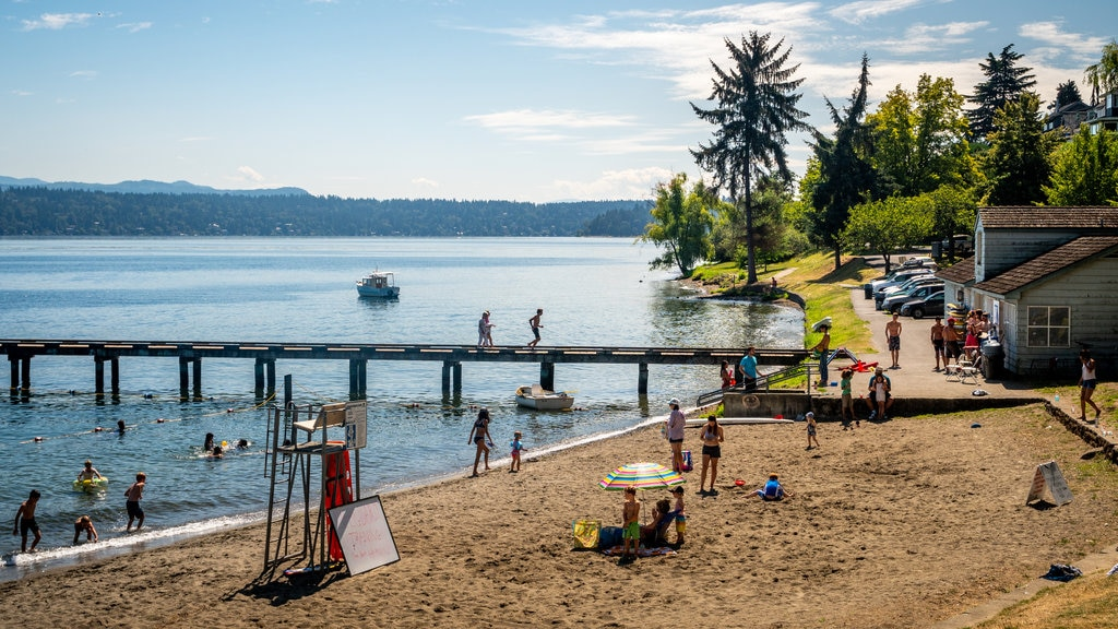 Mount Baker Beach which includes general coastal views and a beach