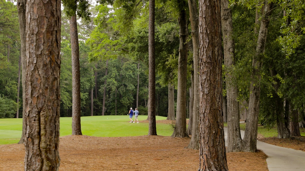 Tidewater Golf Club which includes golf as well as a couple