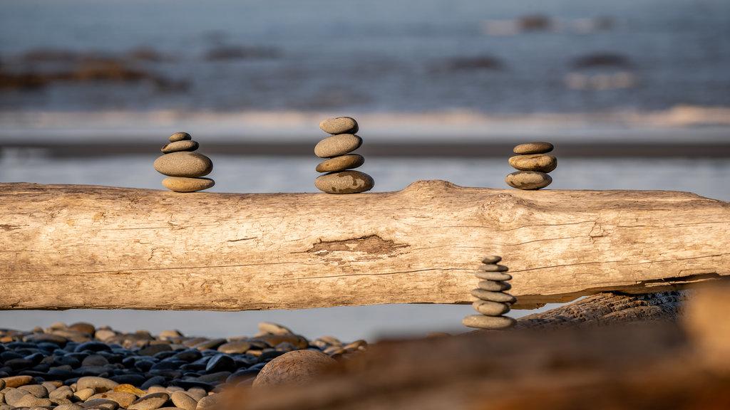Ruby Beach showing a pebble beach