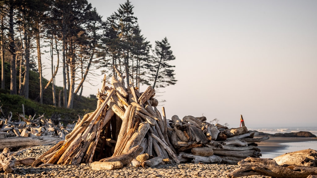 Ruby Beach which includes a pebble beach and general coastal views