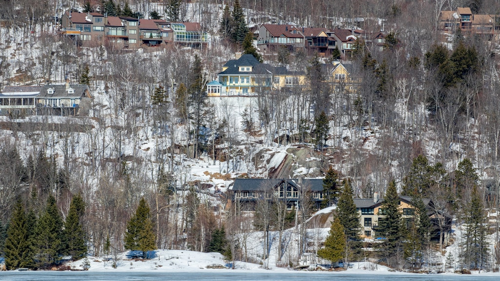 Lake Tremblant showing a small town or village and snow