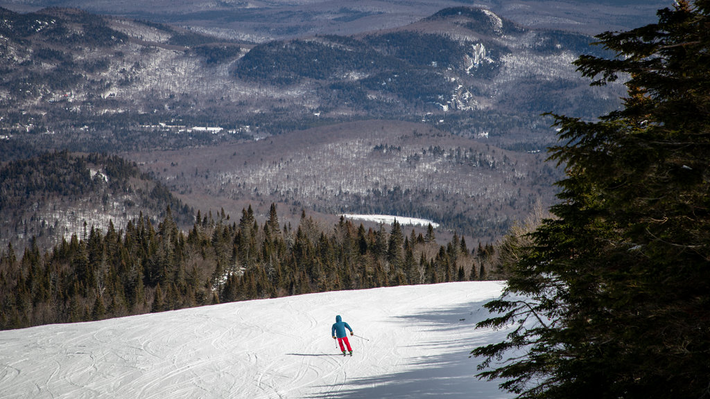 Mont-Tremblant showing snow, snow skiing and landscape views